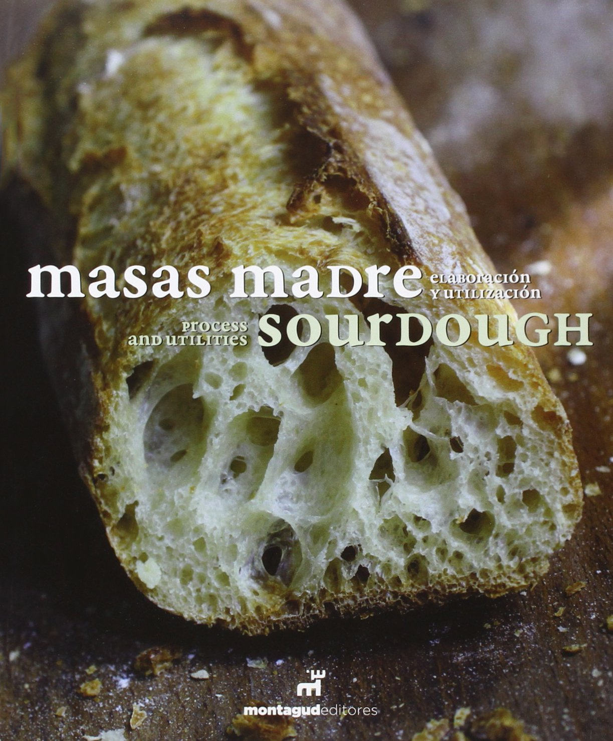 Masas Madre. Sourdough - Edición Bilingüe: Amazon.es ...