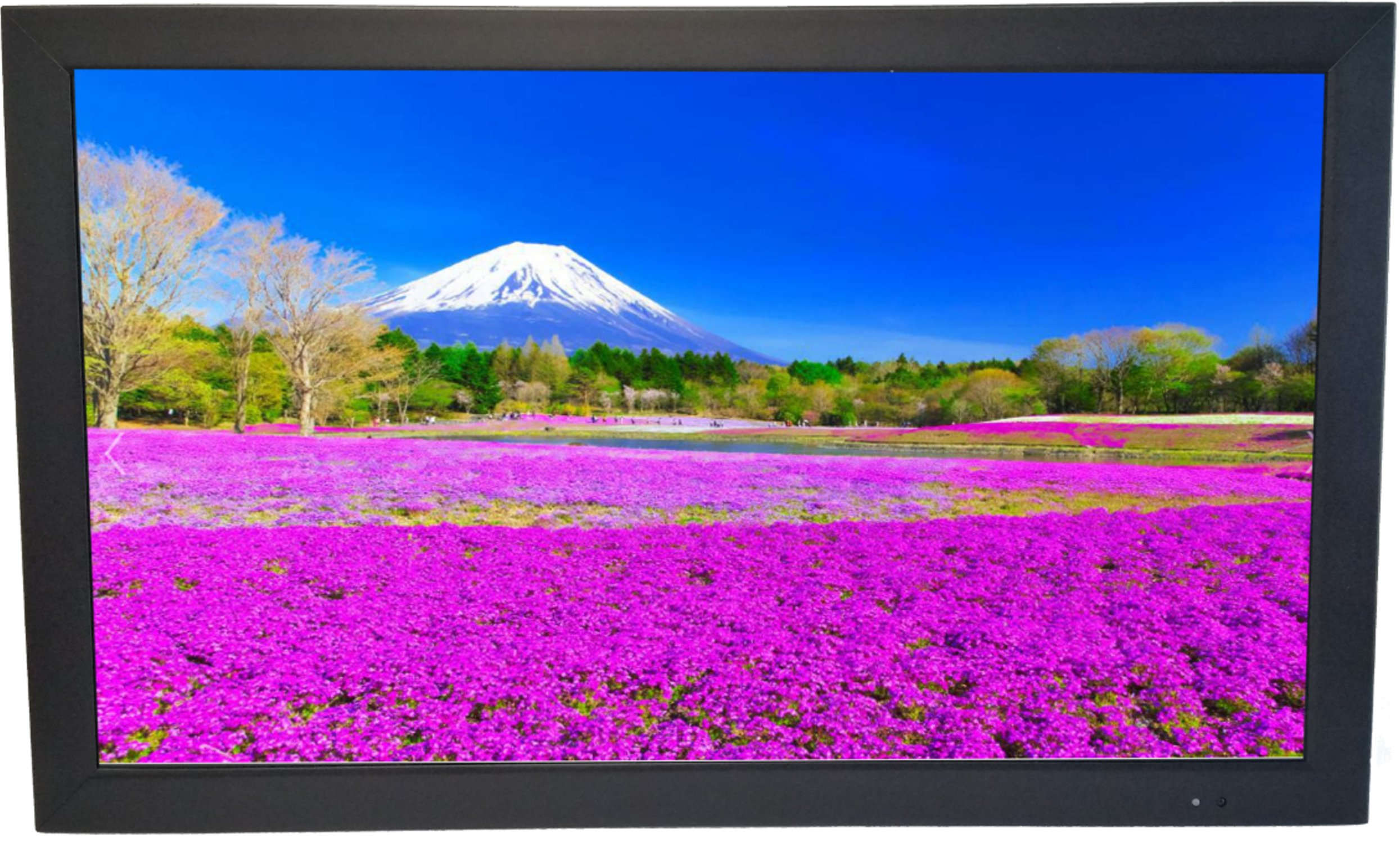ViewEra V215HBM TFT LCD Security Monitor 21.5'' Screen Size, VGA, 2x HDMI In, 1x USB In, 1x BNC In, Resolution 1920 x 1080, Brightness 250, Contrast Ratio 1000:1, Response Time 5ms, Built-In Speaker