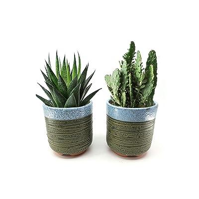 Set of 2, The Elixir Eco Green 4 Inch Container Planter Ceramic Flowering Unglaze Handmade Natural Sandy Succulent Cactus Plant Pot, Flower Pot, Plant Pot (Big, Style A): Garden & Outdoor
