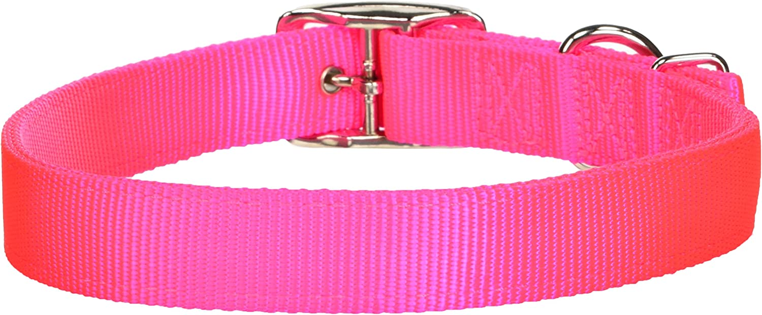 Camouflage Hamilton Double Thick Nylon Sports Dog Collar 1 by 24-Inch