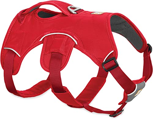 RUFFWEAR---Web-Master,-Multi-Use-Support-Dog-Harness
