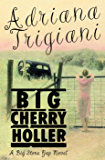 Big Cherry Holler: A Big Stone Gap Novel