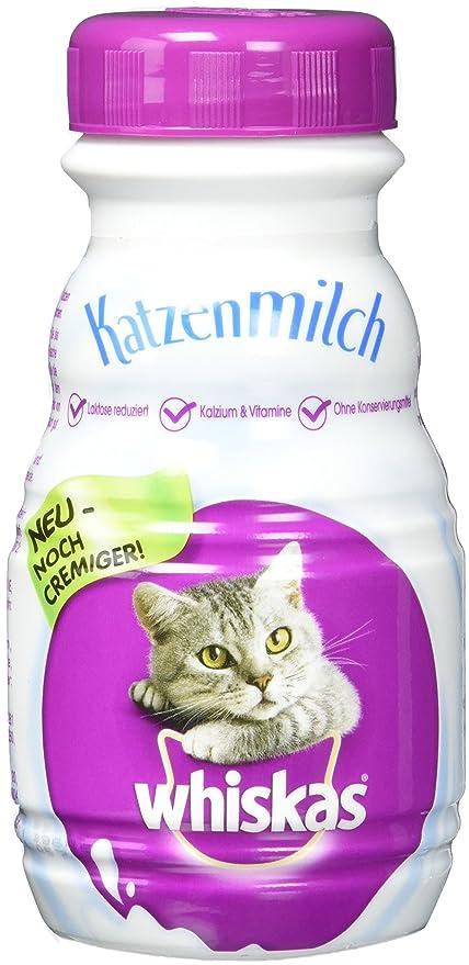 whiskas Gato Leche para Gatos y heranwachsende Gatito, 6 Botellas (6 x 200 ML