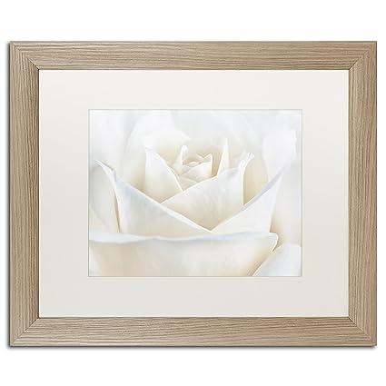 Amazon.com: White Matte Birch Frame Pure White Rose Wall Decor by ...