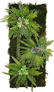 CHIPYHOME Jardin Vertical 4 Bolsillo semilleros o Planta Artificial depende la luz Decoracion Actual, Interior y Exterior restaurantes, Casas, Loft, 62 x 26 cm tamaño para Espacios reducidos: Amazon.es: Productos para mascotas