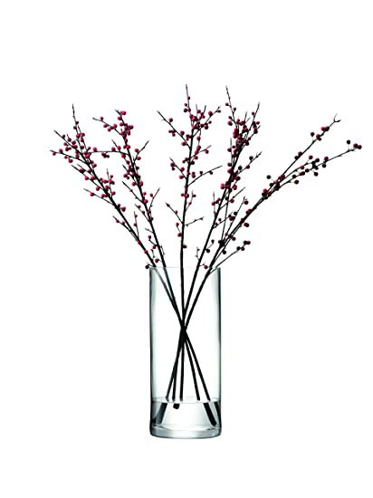 Amazon Lsa International 42 Cm Column Vase Clear By Lsa