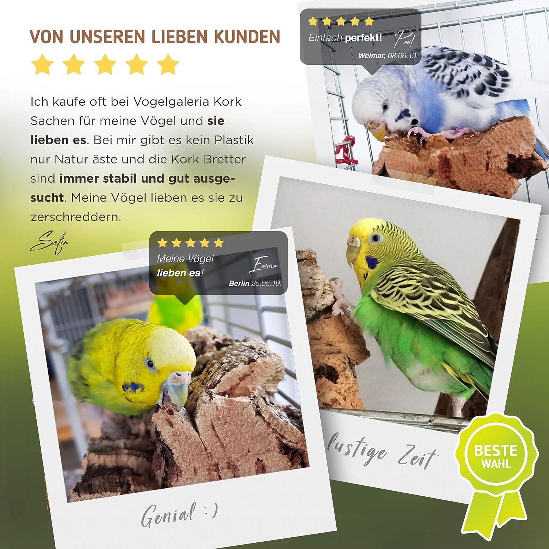 Vogelgaleria Corcho Seating Bench M | pájaros Accesorio para ...