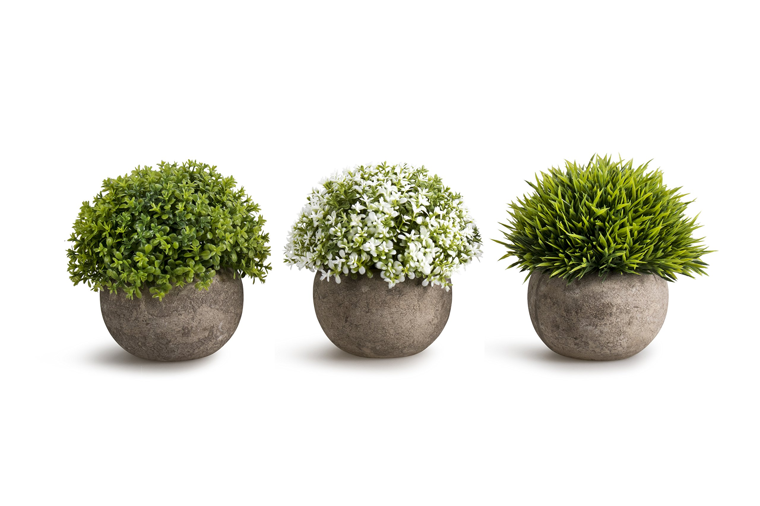 OPPS Artificial Plastic Mini Plants Unique Fake Fresh Green Grass Flower in Gray Pot for Home Décor - Set of 3 by OPPS