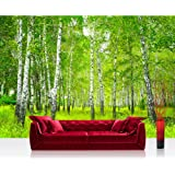 """Photo wallpaper - birch forest sun - 157.4""""W by 110.2""""H (400x280cm) - Non-woven PREMIUM PLUS - SUNNY BIRCH FOREST - Wall Decor Photo Wall Mural Door Wall Paper Posters & Prints"""