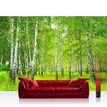 Fototapete birkenwald  Vlies Fototapete 350x245 cm PREMIUM PLUS Wand Foto Tapete Wand ...