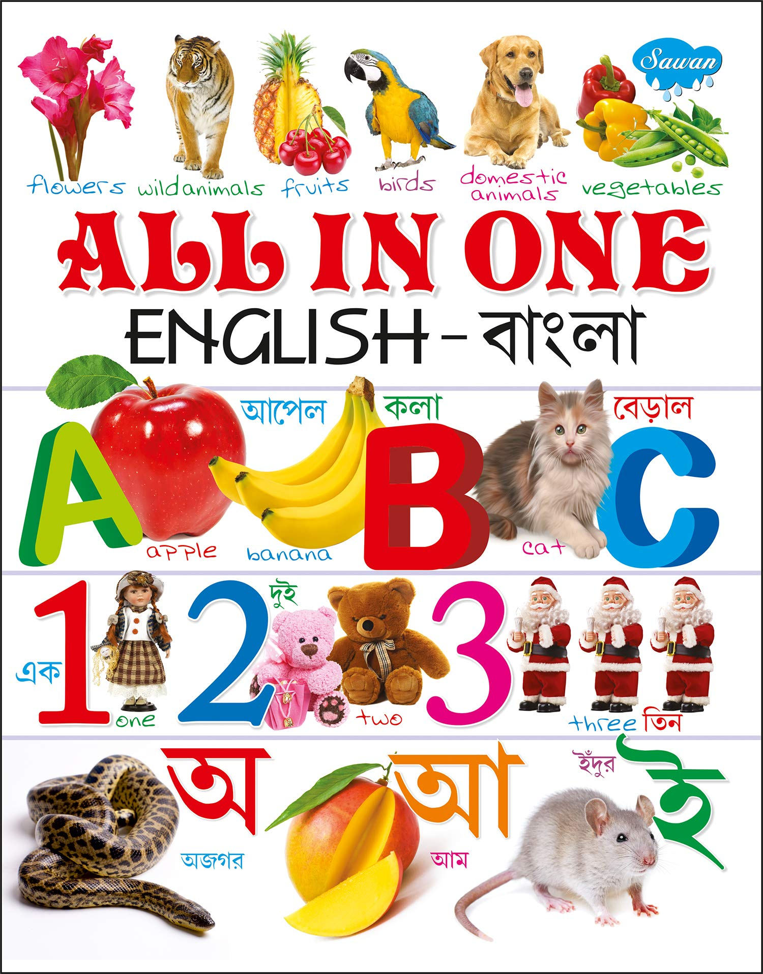 All in One (English-Bangla)
