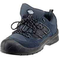 Dickies Everyday Safety Shoes Mens Steel Toe Cap Anti Scuff Toe Heel UK6-14