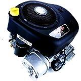 Motor Briggs Stratton 344 CC salida 25,4 x 80 mm con motor de arranque para tractor…