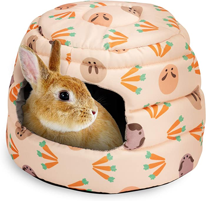 Top 10 Guinea Pig Bed Or Home