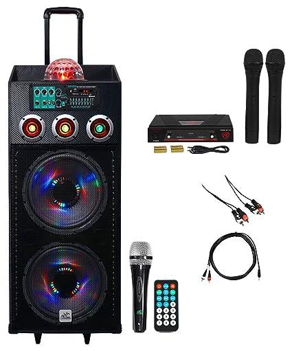 amazon com nyc acoustics dual 12 karaoke machine system w 2 mics rh amazon com