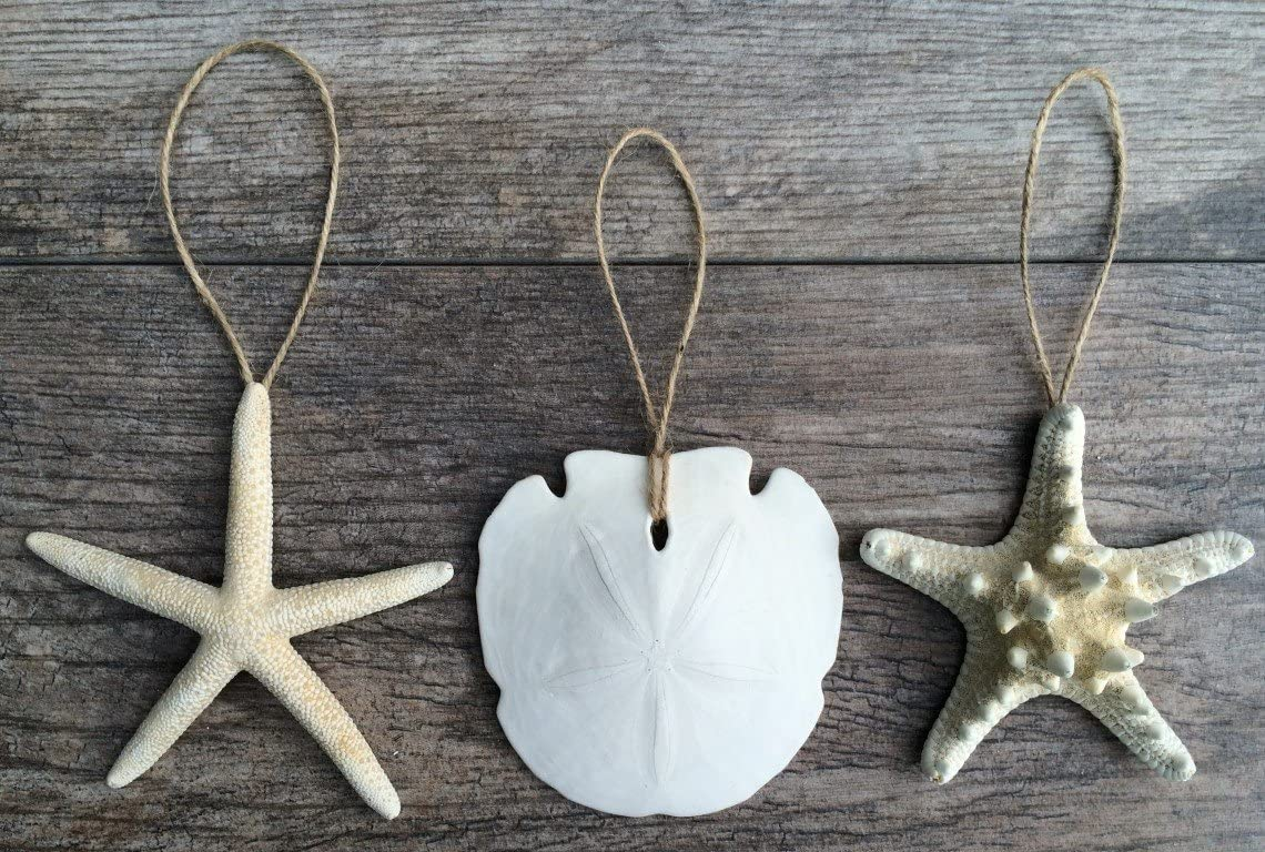 "Nautical Christmas Ornaments | Natural White Finger Starfish, Sand Dollar and Knobby Starfish Ornaments 4""-5"" 