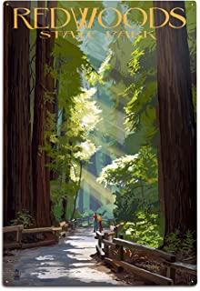 product image for Redwoods Park, California, Pathway in Trees (12x18 Aluminum Wall Sign, Wall Decor Ready to Hang)