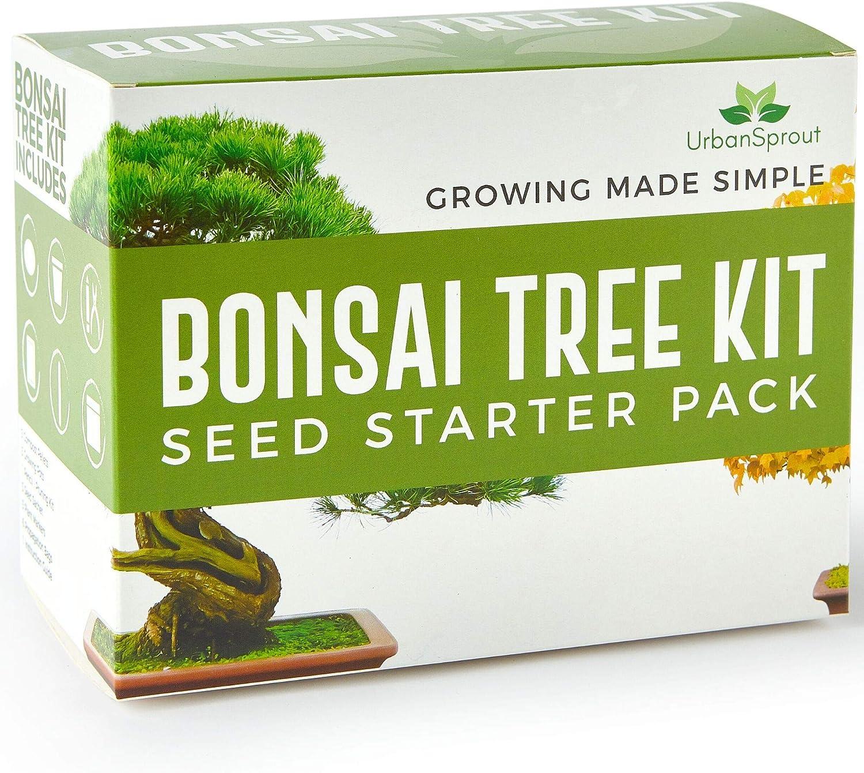 Kit de Bonsai – Cultive sus Propios Bonsáis con Semillas para cultivo de interior - Incluye 5 variedades – Kit base para germinación con herramientas de jardin - Instrucciones en Español
