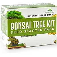 Urban sprout – Kit arbre Bonsaï – Cultiver vos propres arbres de Bonsaï à partir des graines – Kit cadeau de jardinage – 5 variétés de semences Bonsaï – Démarreur de germination