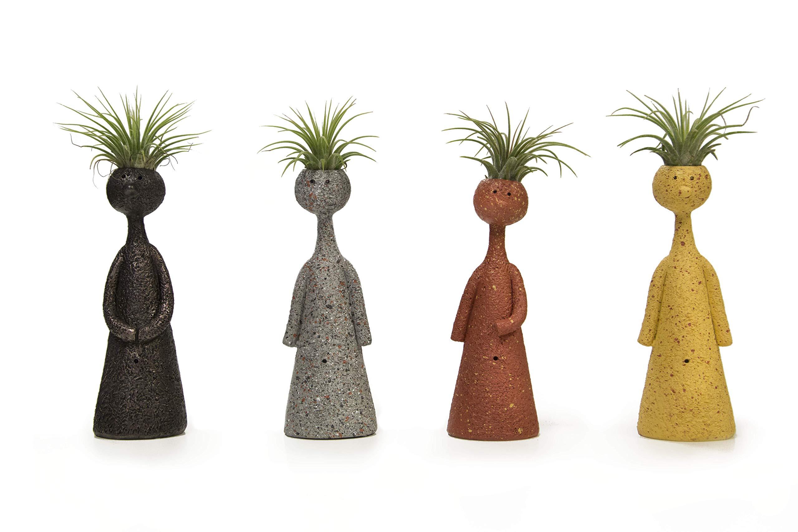 LiveTrends Design LT LiveTrends -Thinkers (Set of 4) Living Plant Décor, Assorted by LiveTrends Design