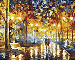 CHARMDI Paint By Number Kits,Diy Oil Painting Canvas Painting by Numbers For Kids, Adults,Students,Beginner,Arts Craft For Home Wall Decor Gift 16X20 Inch (Couples)
