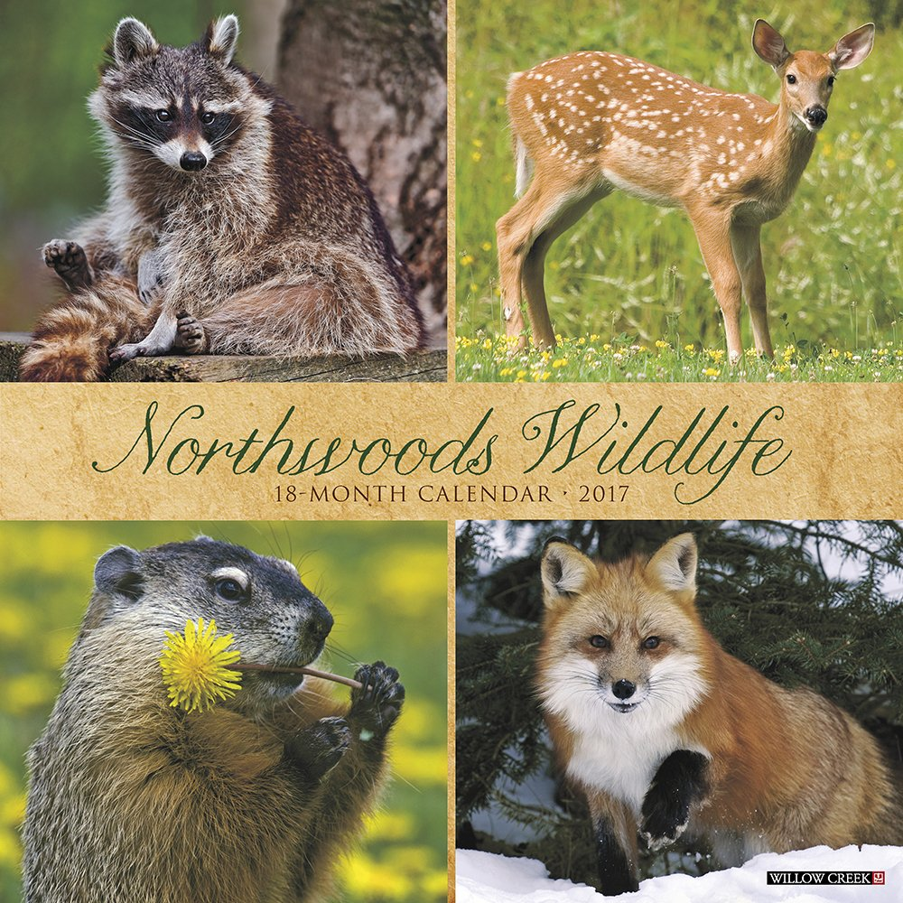 Northwoods Wildlife 2017 Wall Calendar