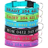 Personalized Dog Collar - Custom Dog Collars Embroidered ID Pet Name & Phone Number – Reflective Stitch for Dog Safety - Heavy Duty Adjustable for Small Medium Large Dogs Cats - Prevent Pet Loss