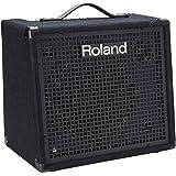 Roland 4-channel Mixing Keyboard Amplifier, 100 watt (KC-200)