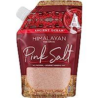 SaltWorks 古代海洋喜马拉雅粉盐,细粒,Artisan Pour-喷嘴袋,16 盎司 Himalayan (Fine) 16盎司