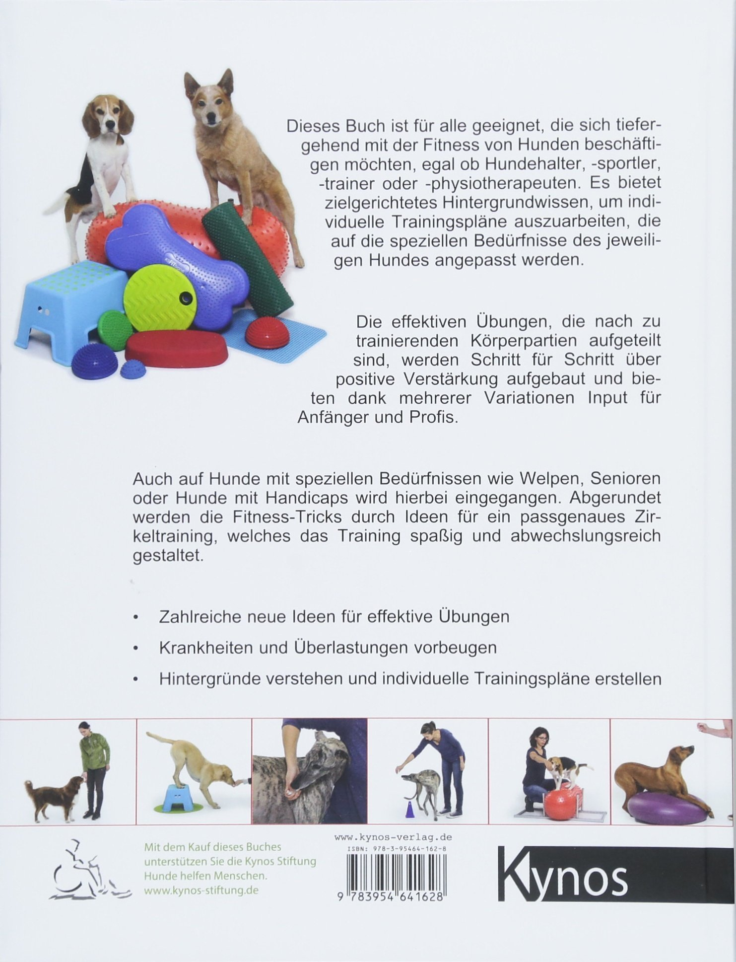 Praxisbuch Hundefitness: Grundlagen, zielgerichtetes Training und  individuelle Übungskombinationen: Amazon.de: Carmen Heritier, Sandra Rutz:  Bücher