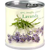 LAVANDA Fiori in Lattina MACFLOWERS made in Germany cm 7,5x8 h. Stappa, annaffia e divertiti!