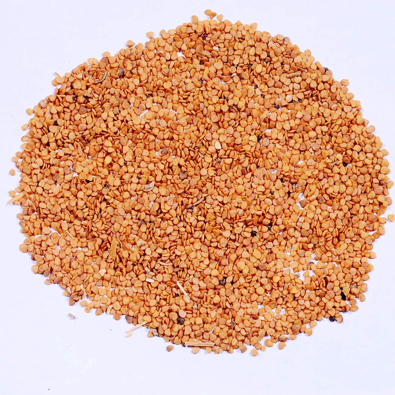 Ashwagandha Indian Ginseng 100 seeds Withania somnifera