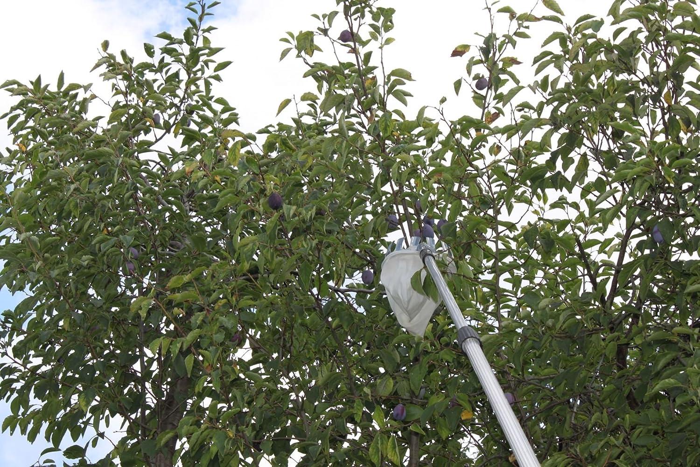 Fenwi apfelpflücker obstpflücker zur obsternte als zubehör für