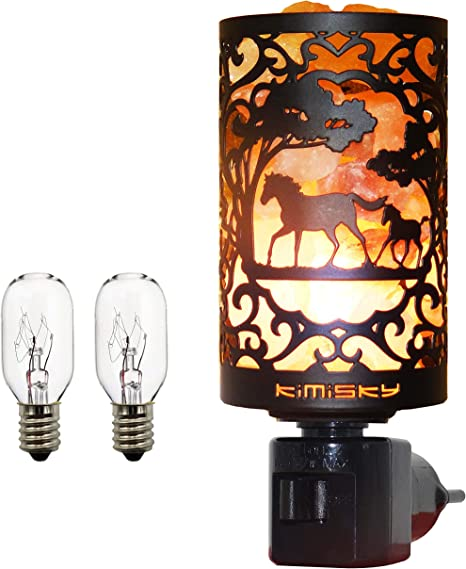 Amazon.com: Lámpara de sal del Himalaya Kimisky, lámpara de ...
