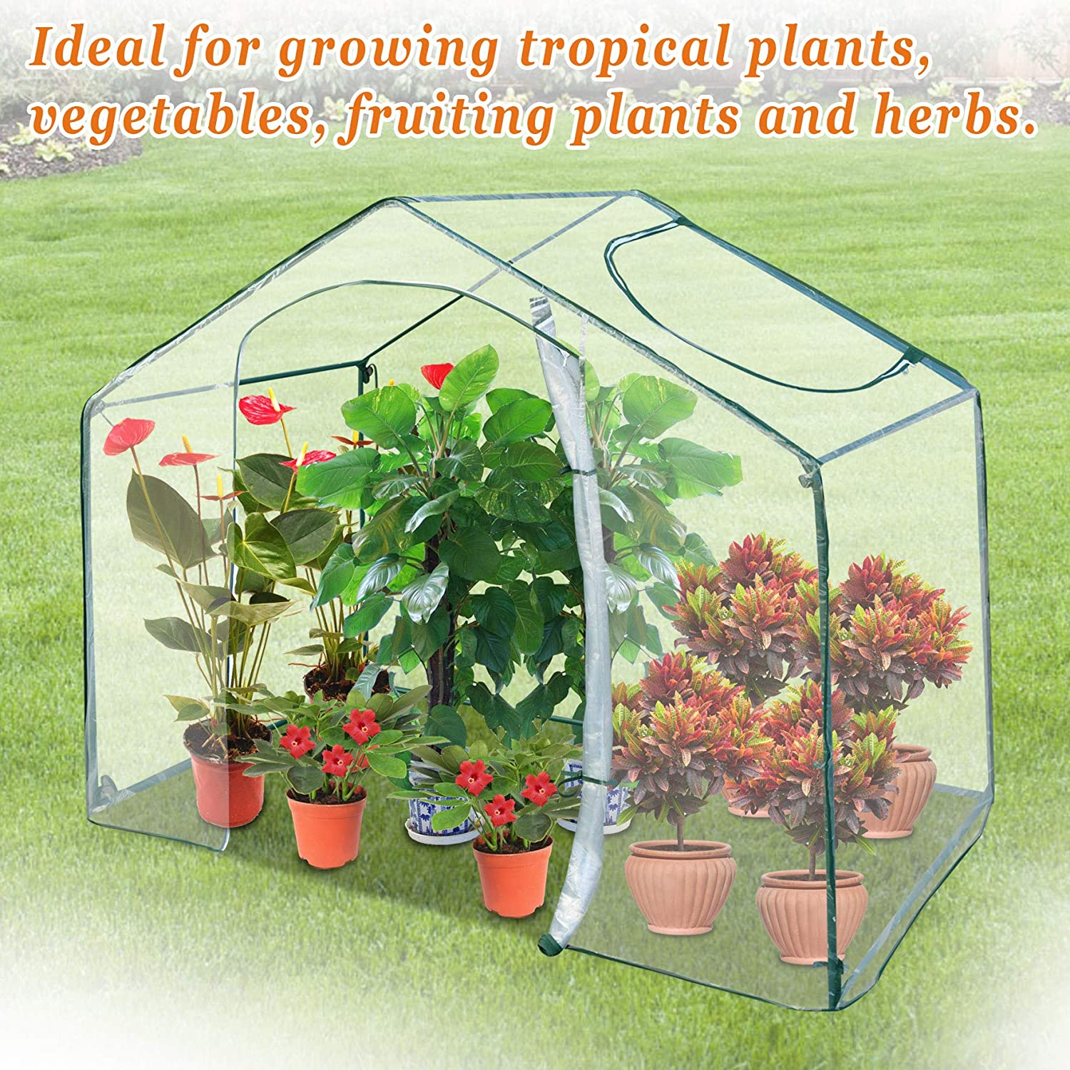 Strong Camel Small Walk-in Plants Greenhouse Plant Flower Garden Green Hous 5.9 x 3.5 x 5