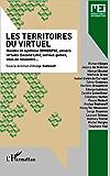 Les territoires du virtuel: Mondes de synthèse (MMORPG), univers virtuels (Second life), serious games, sites de rencontre...