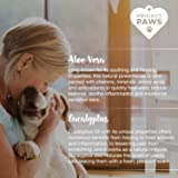 Project Paws Dogs Ear Wipes - Dog Ear Cleaner Wipes with Aloe and Eucalyptus to Soothe Ears and Prevent Odor, Itching, Mites, Yeast and Ear Infections - 100 Count