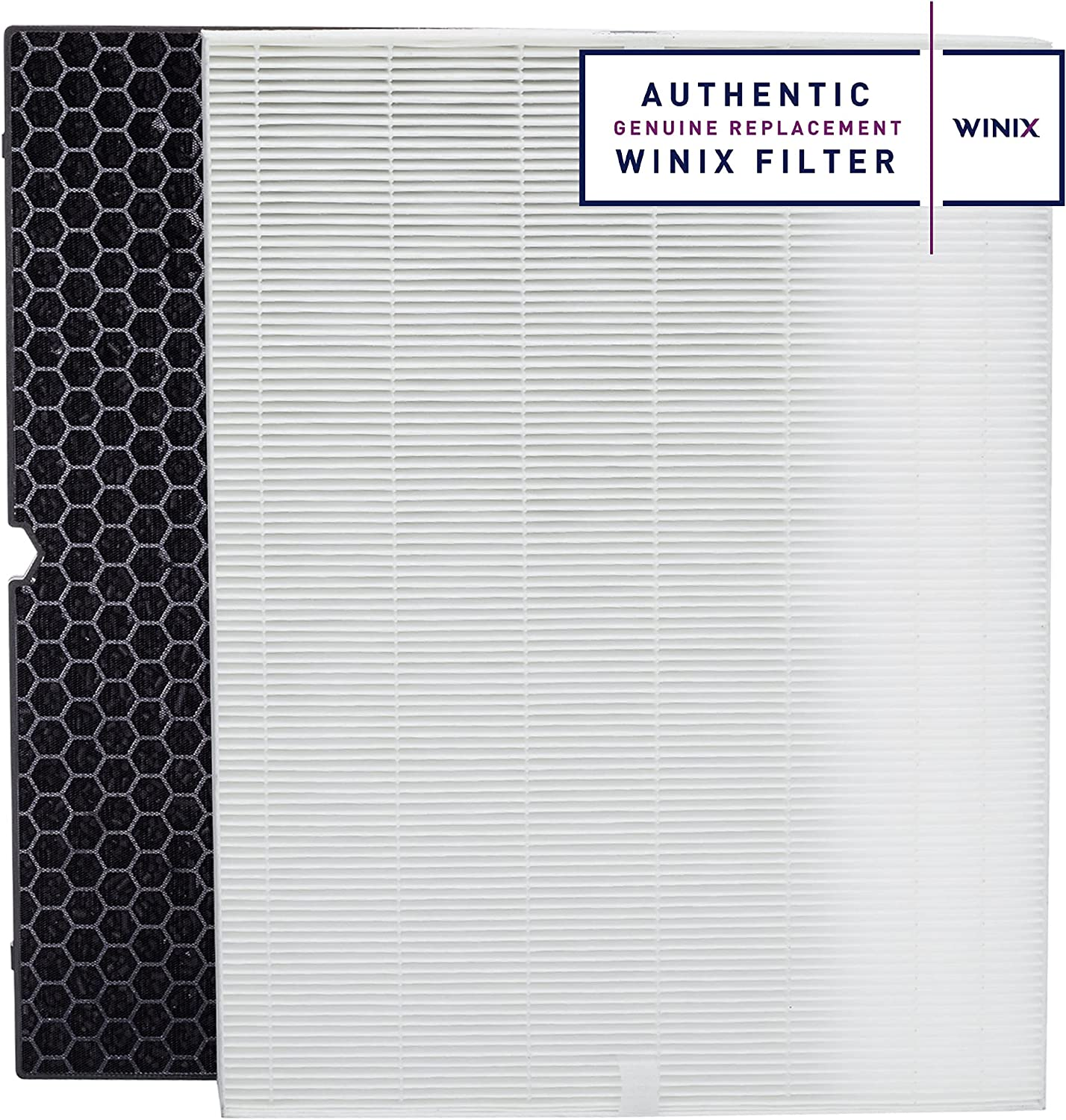 Genuine Winix 116130 Replacement Filter Purifie depot Ranking TOP4 Air for H 5500-2