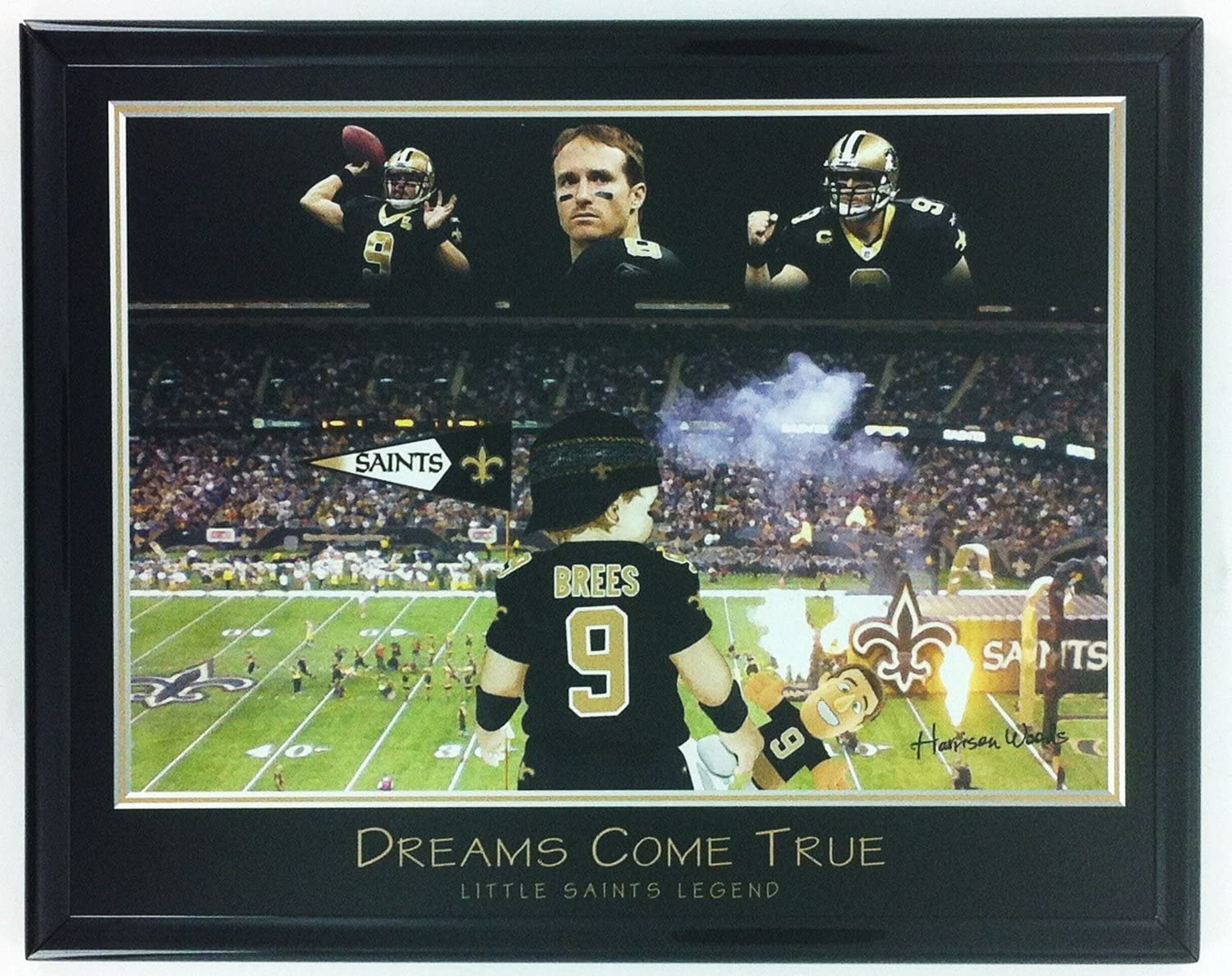 New Orleans Saints Little Legend Framed Lithograph and Louisiana Superdome Framed Aerial Photo Set of 2 LL5008