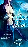 In Darkness Reborn (Paladins of Darkness, Book 3)
