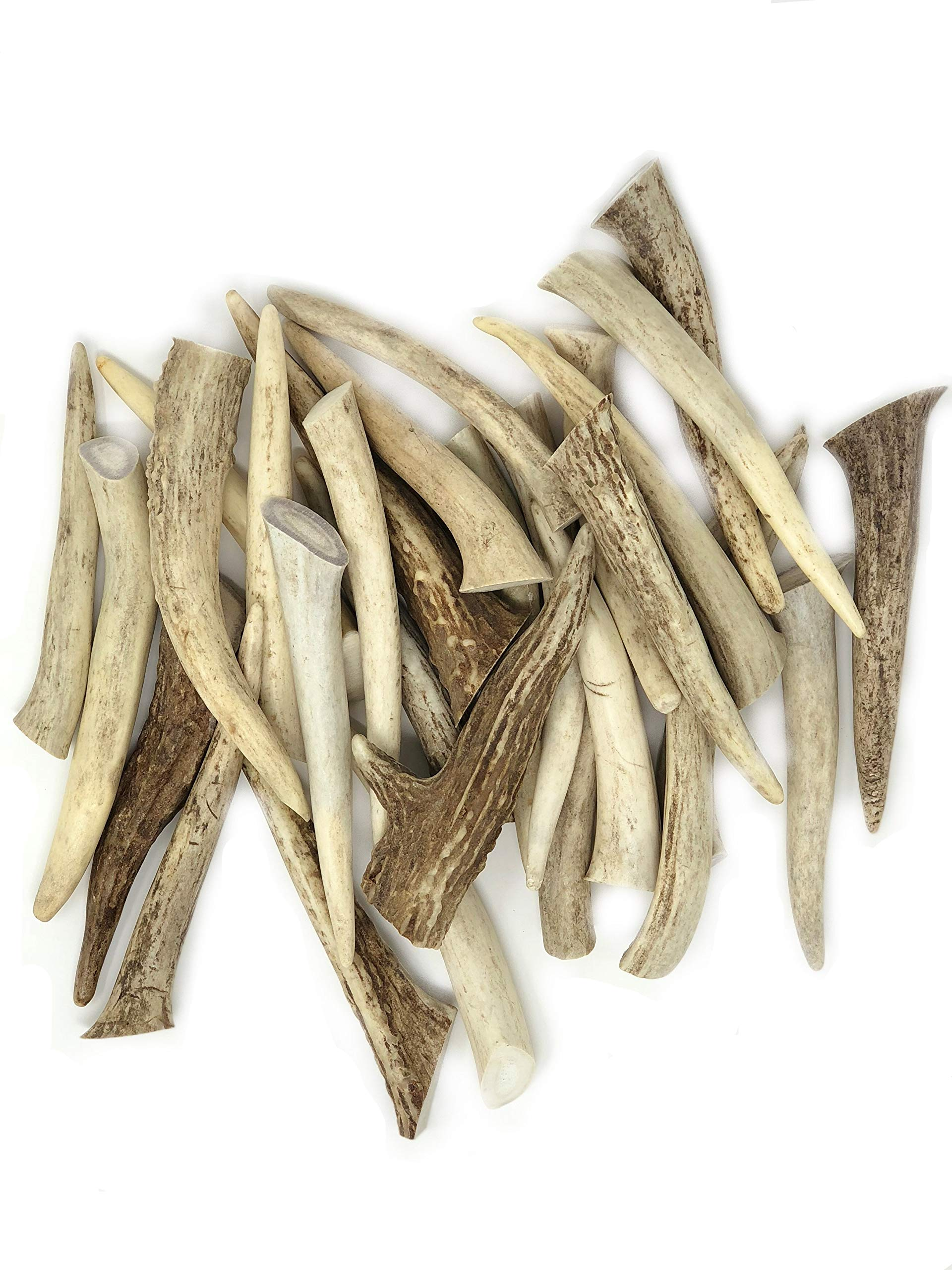 "Natural Dakota Deer Antler Crafting Points (Jewelry, Crafts, Home Décor) (3""-5"")"