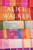 Possessing the Secret of Joy: A Novel