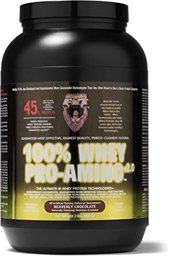 Healthy N Fit 100 WHEY PRO-AMINO v2.0-Chocolate 2lb 100 Whey Protein PLUS Peptides From America's 1 Brand