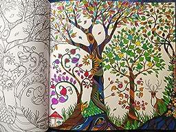 Forêt enchantée - Carnet de coloriage et Chasse au trésor antistress Loisirs