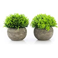 Artificial Plants in Pots for Home Decor Indoor, Small Faux Plants Potted Set of 2 Green, Small Fake Plants for Office…