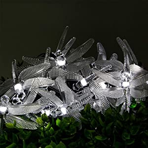 Dragonfly Lights, DINOWIN 20FT/6M 30 LED Solar String Lights with 8 Modes Lights Waterproof for Outdoor, Garden, Christmas Decorations (Cold White)