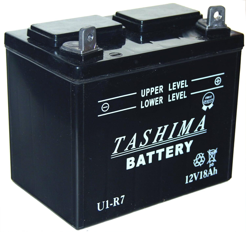 Greenstar 13197 batería para cortacésped U1 R7 F503: Amazon.es ...