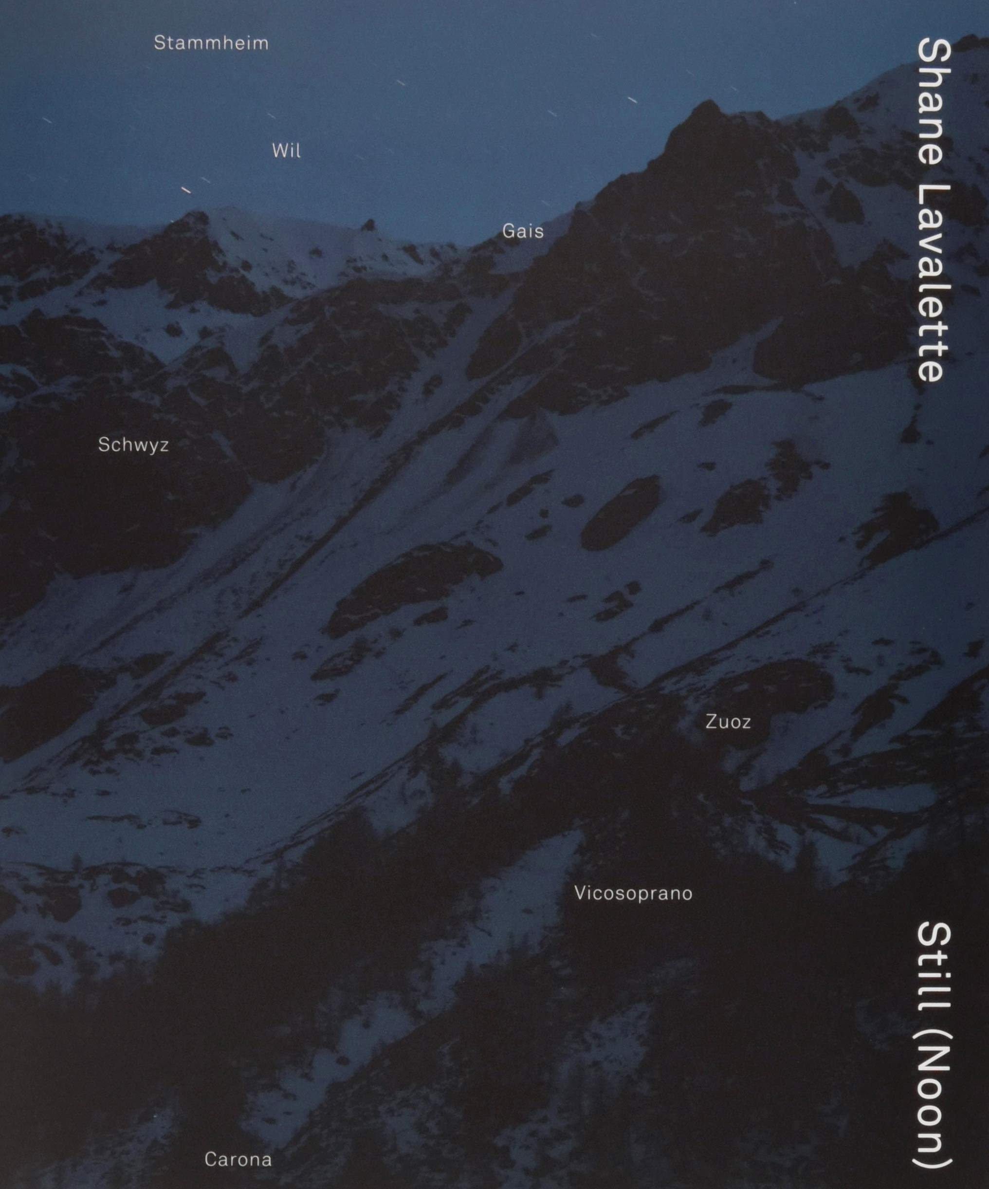 Download Shane Lavalette: Still (Noon) pdf epub