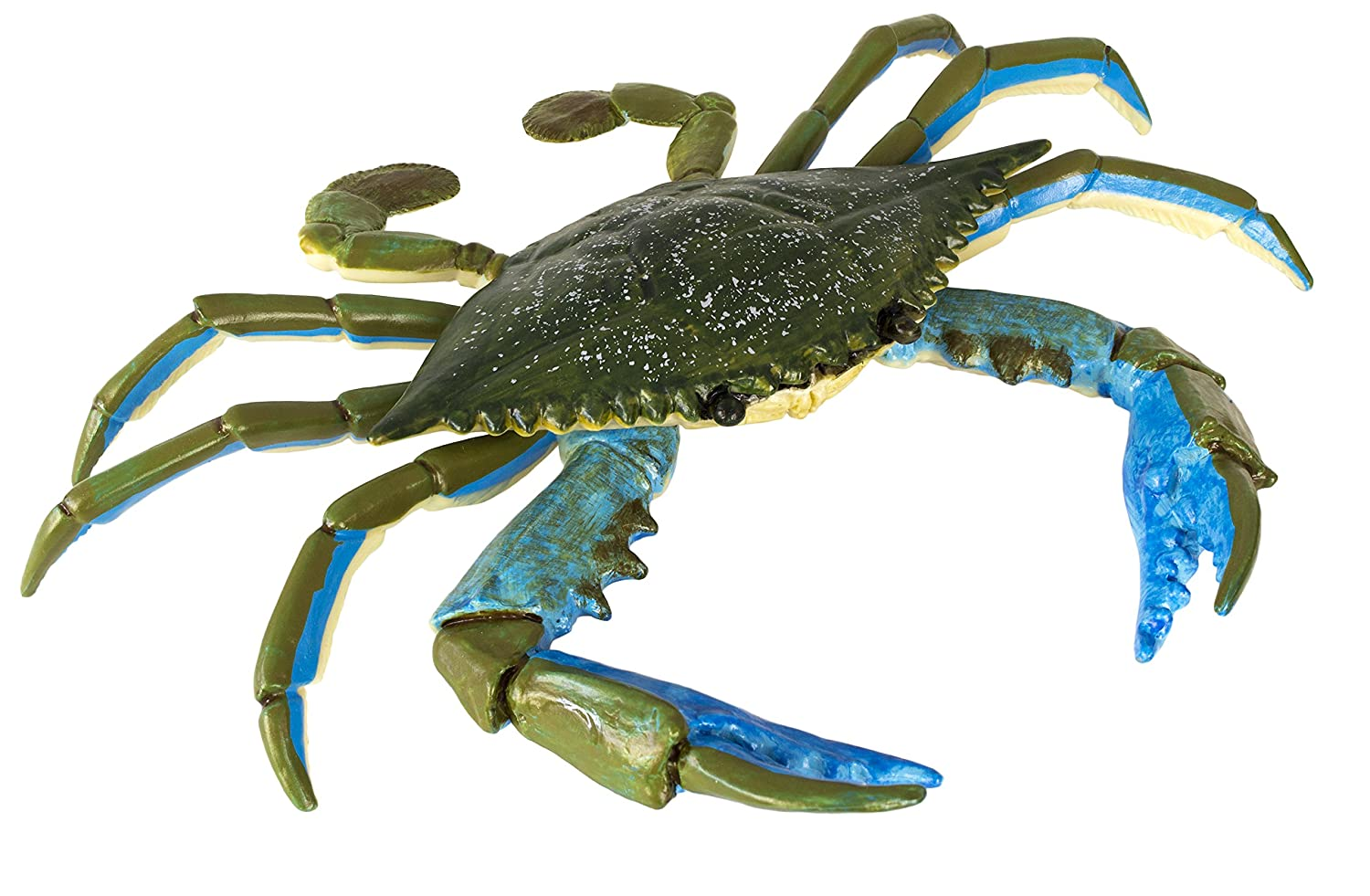Amazon safari ltd incredible creatures blue crab toys games amipublicfo Images