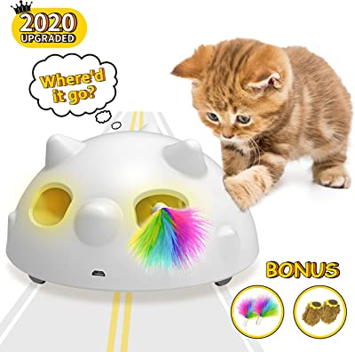dynamic cat toy